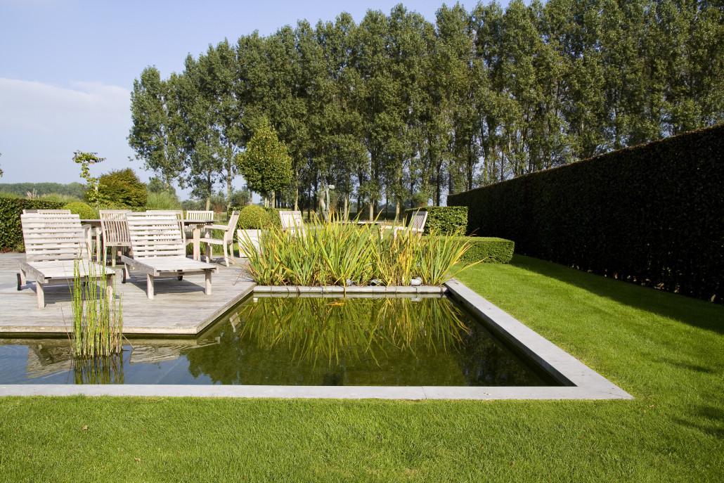 landschappelijke tuin met waterpartij in adegem de